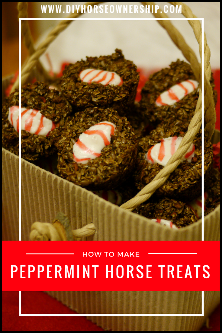 Diy How To Make Peppermint Horse Treats Diy Horse Ownership