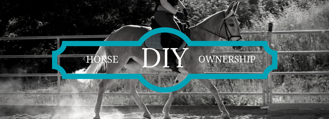 DIY Horse Ownership