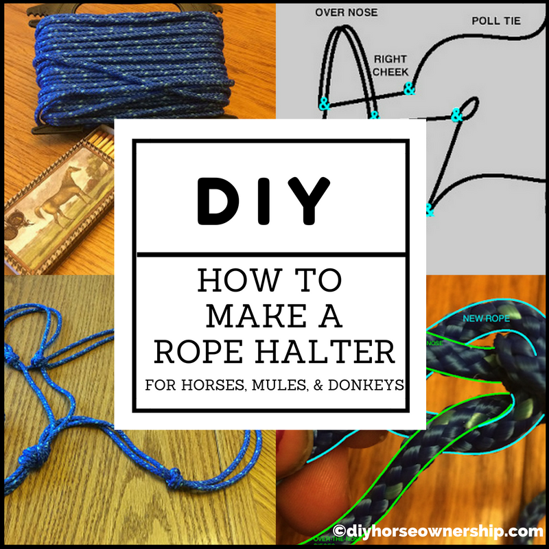 DIY Rope Halter