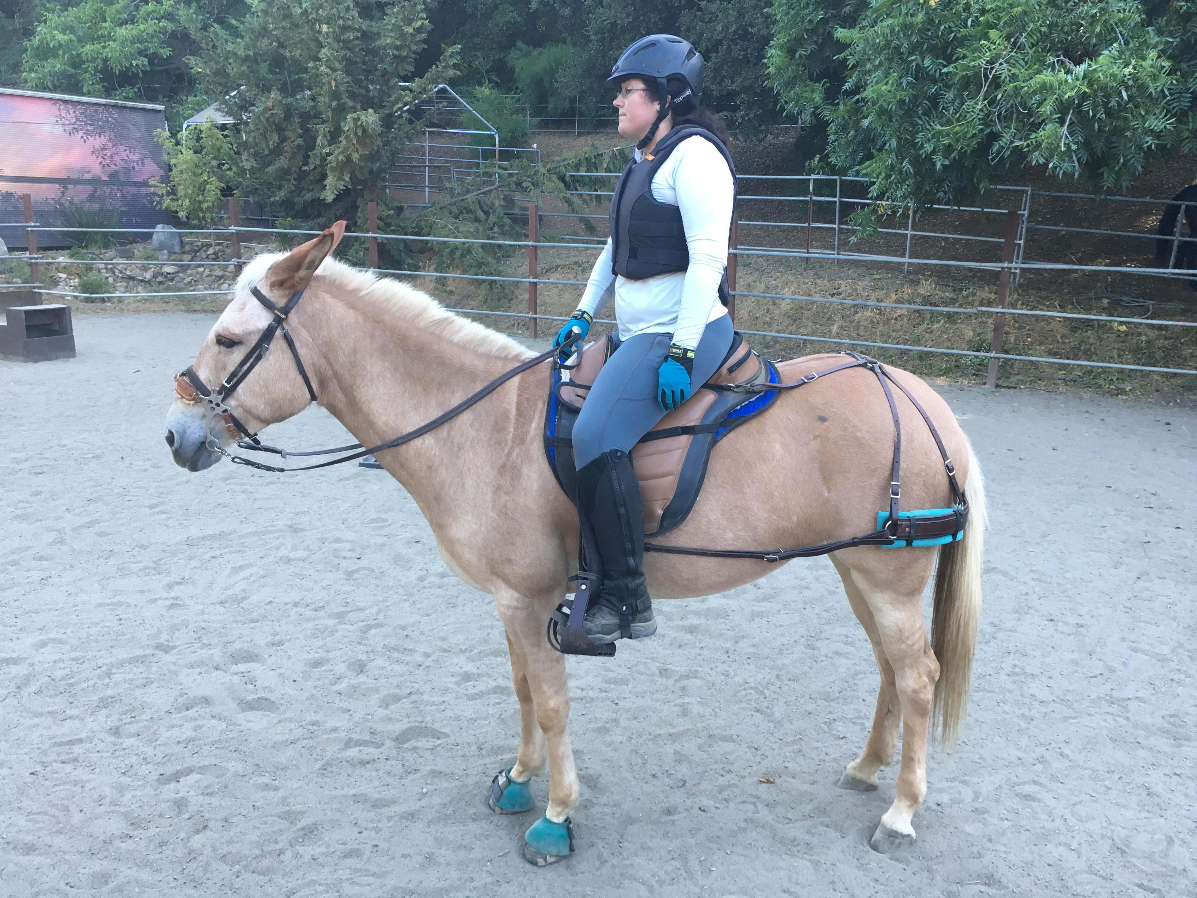 Current Saddle
