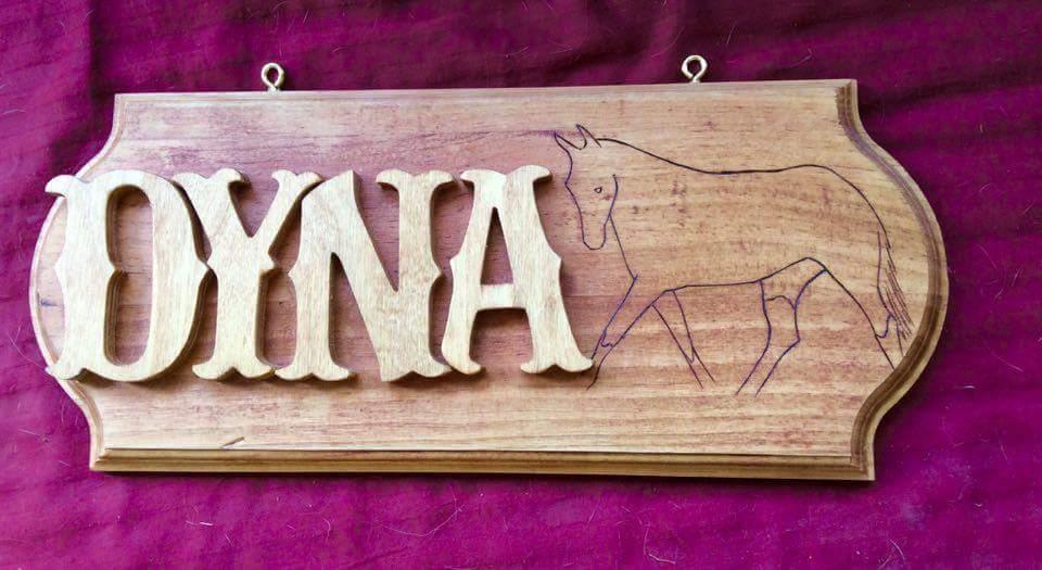 dyna2