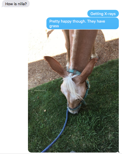 texts with husband