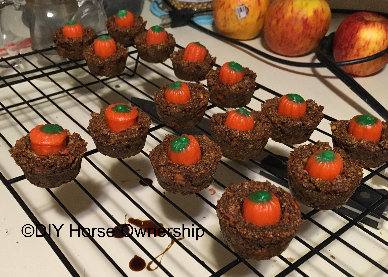 pumpkinhorsetreatscooling