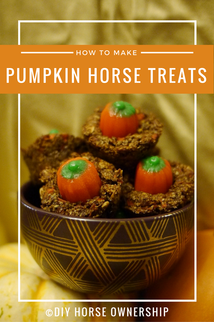 DIY How to make pumpkin horse treats recipe
