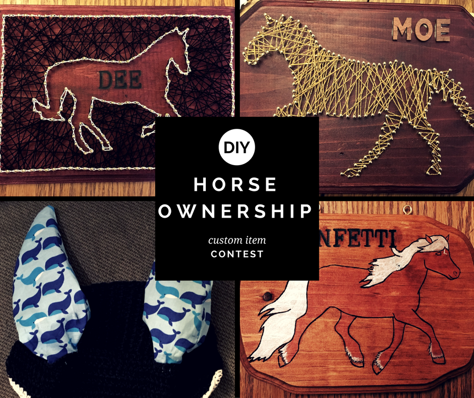 diy horse ownership-3