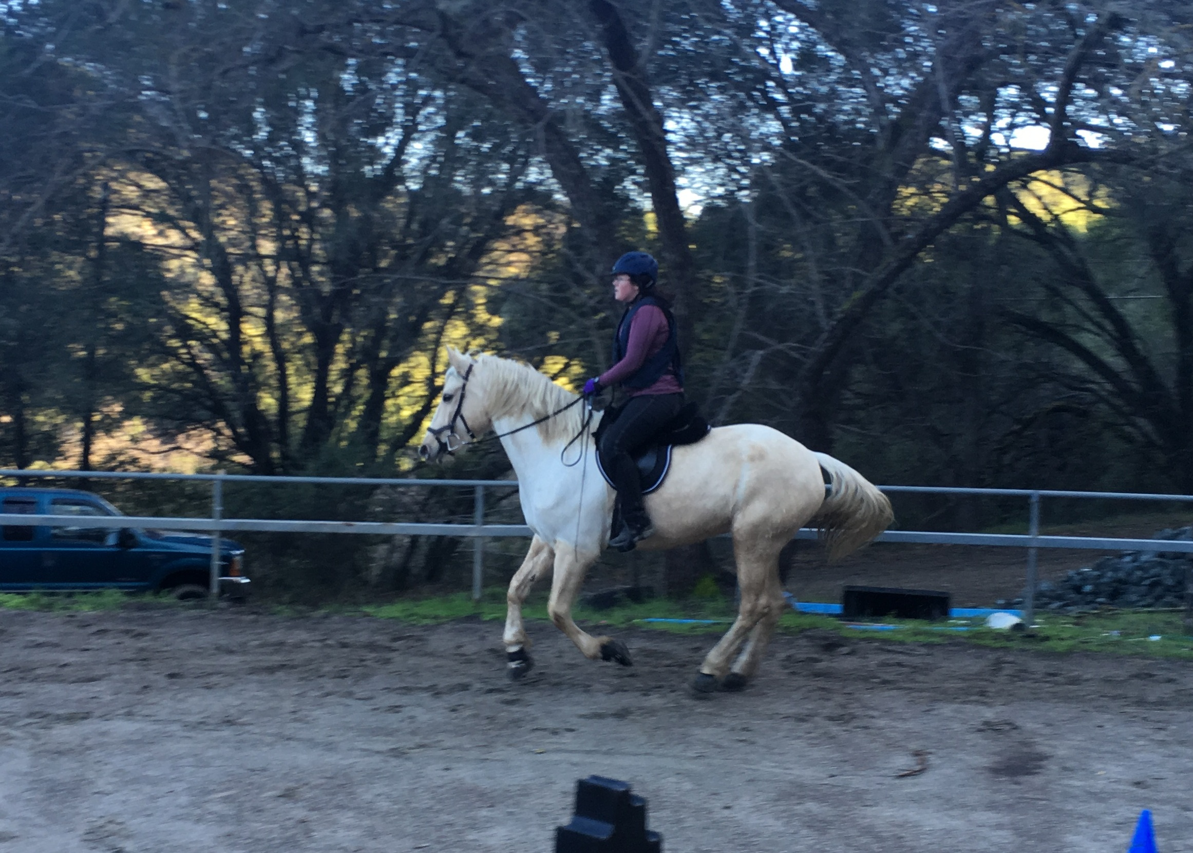 January 2017 diy horse ownership a weekend without rain saturday solutioingenieria Gallery