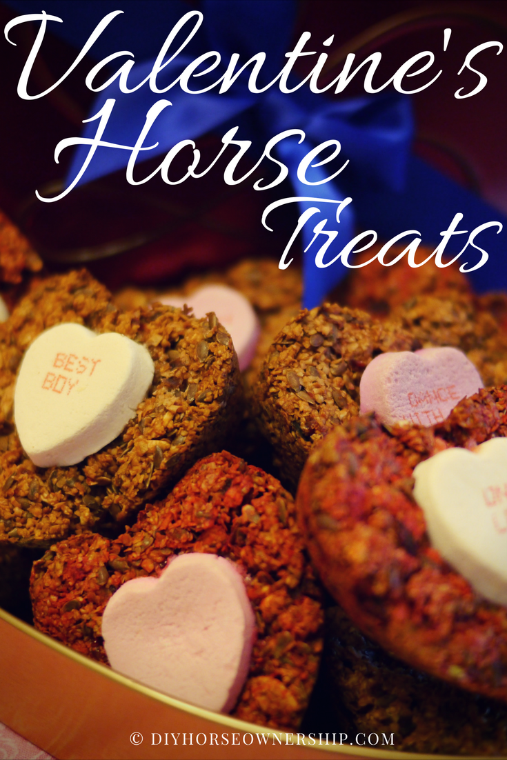 DIY Do It Yourself How to make Valentine's Horse Treat Recipe