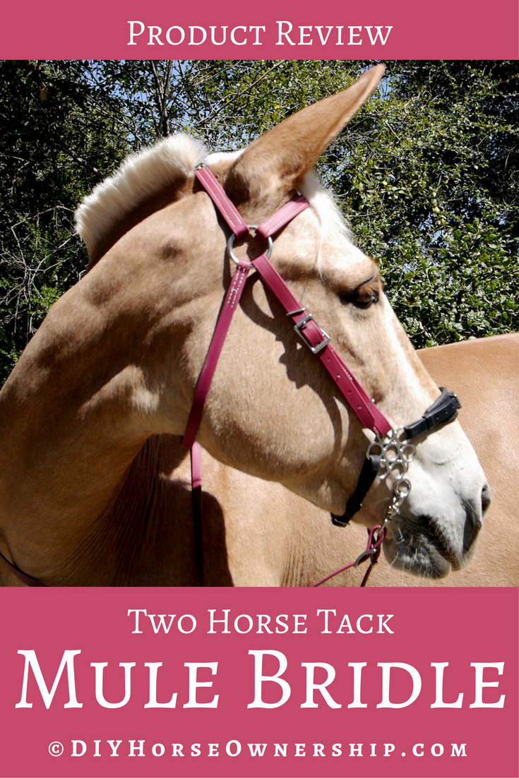 Two Horse Tack Mule Bridle Review