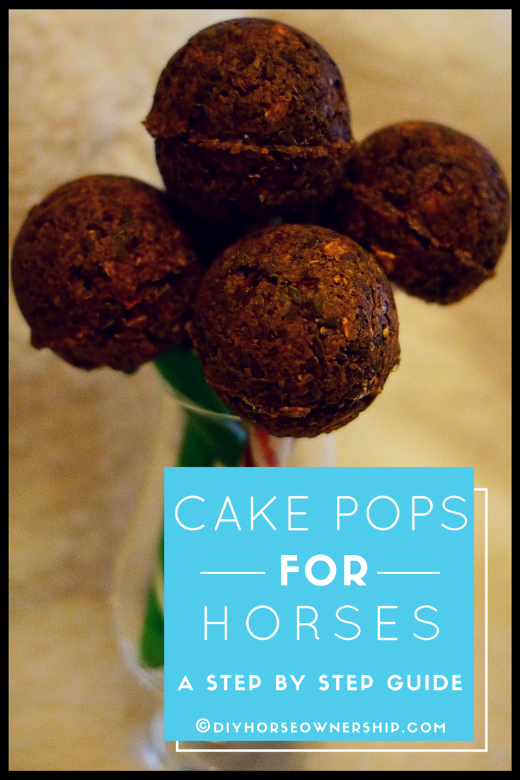 DIY Do It Yourself How to Make Cake Pops for Horses Horse Treats Recipe