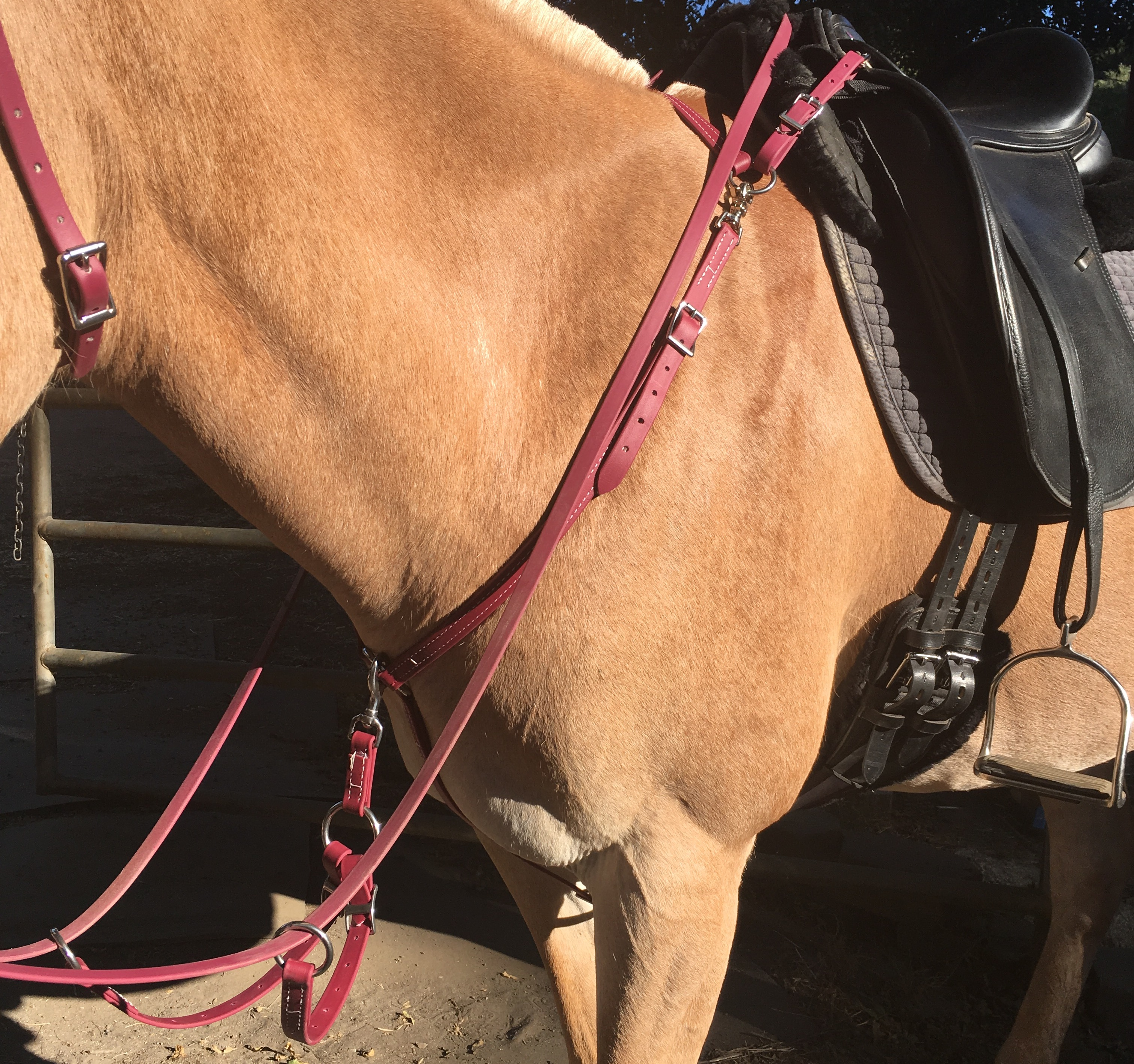 Two Horse Tack Breastplate