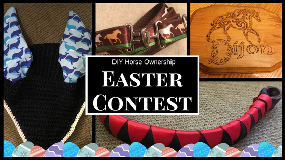 Do it yourself diy horse ownership easter contest and giveaway solutioingenieria Gallery