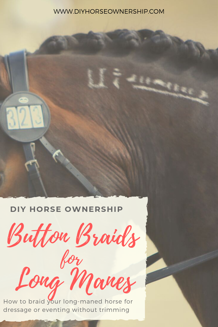 How to button braid long mane